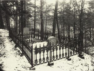 Mary Ellis gravesite before development